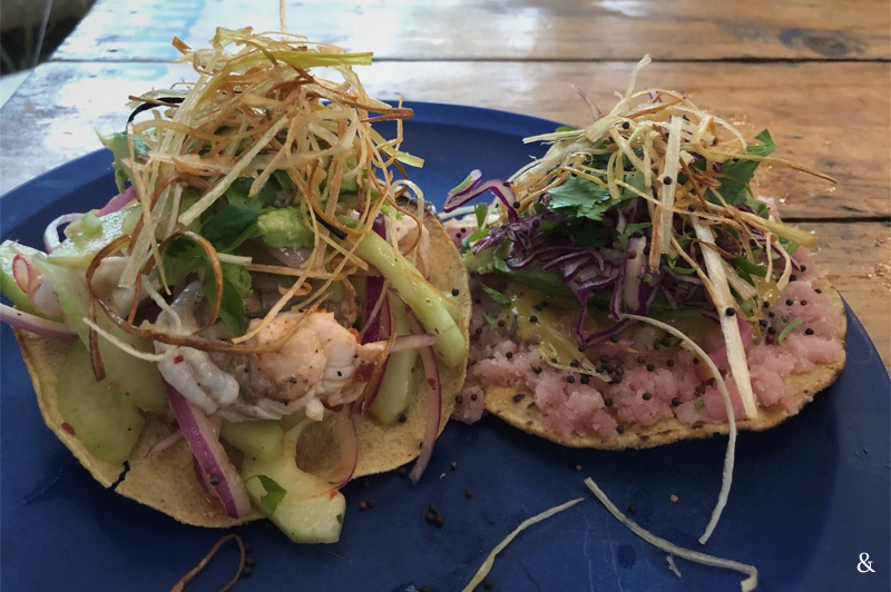 Los Aguachiles Steamed Fish Tacos